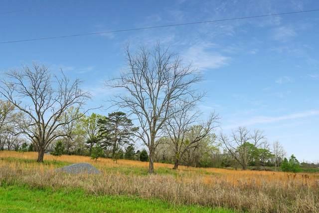 120 Livingston Road, Smithville, GA 31787 (MLS #147220) :: Hometown Realty of Southwest GA