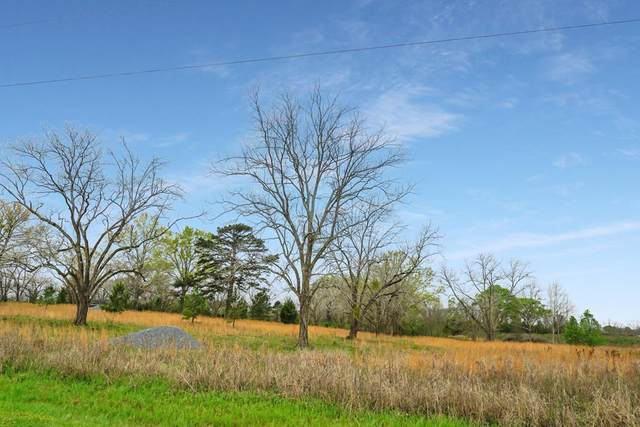 153 Long Dr, Smithville, GA 31787 (MLS #147222) :: Hometown Realty of Southwest GA