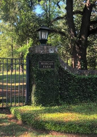 227 Morgan Farm Rd, Leesburg, GA 31763 (MLS #147512) :: Crowning Point Properties