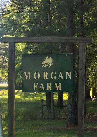 180 Morgan Farm Rd, Leesburg, GA 31763 (MLS #147514) :: Hometown Realty of Southwest GA