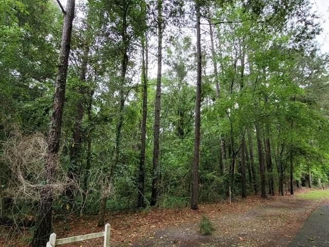 1415 Broach Avenue, Albany, GA 31705 (MLS #147518) :: Crowning Point Properties