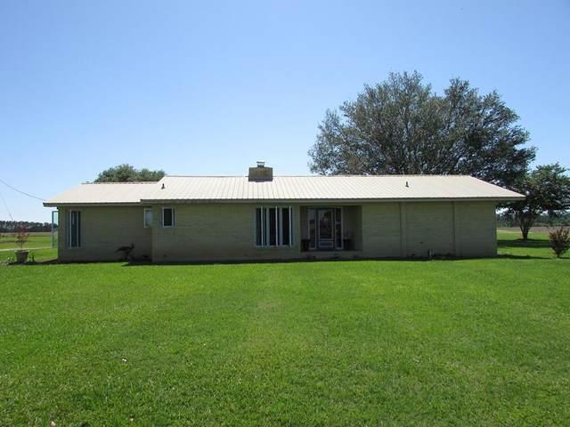 1831 Griggs Lucille Rd,, Blakely, GA 39823 (MLS #147530) :: Crowning Point Properties