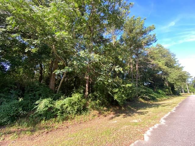 Lot 17 Leland Ferrell Drive, Leesburg, GA 31763 (MLS #147991) :: Crowning Point Properties