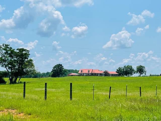 138 Minter Road, Ellaville, GA 31806 (MLS #148112) :: Crowning Point Properties