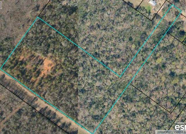 1768 Moultrie Road, Albany, GA 31705 (MLS #148251) :: Hometown Realty of Southwest GA