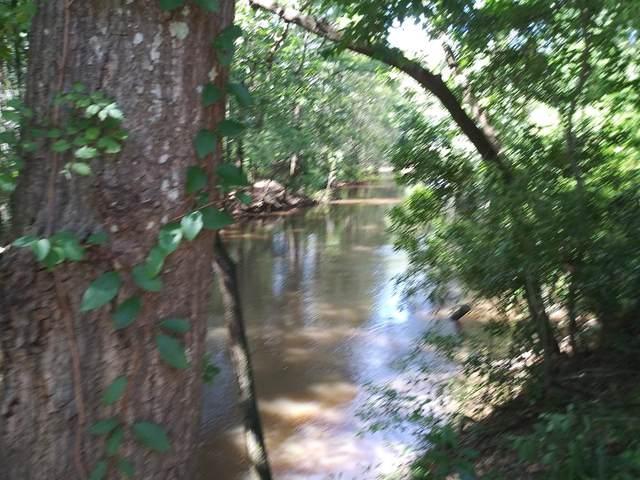 270 Creekside Drive, Leesburg, GA 31763 (MLS #148286) :: Crowning Point Properties