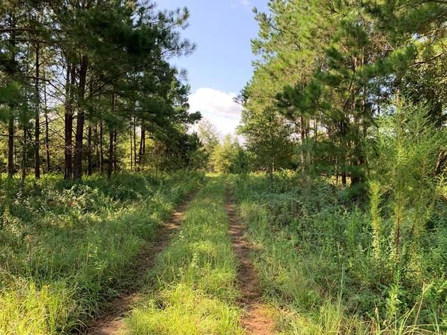 1120 Kreg Ave, Albany, GA 31721 (MLS #148440) :: Hometown Realty of Southwest GA