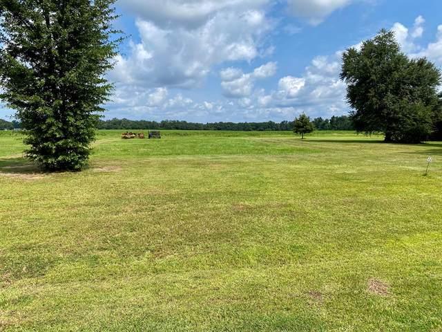 565 Nectar Lane, Albany, GA 31705 (MLS #148447) :: Hometown Realty of Southwest GA