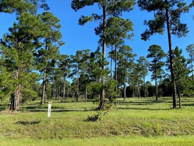 0 Swann Drive, Cordele, GA 31015 (MLS #148569) :: Hometown Realty of Southwest GA