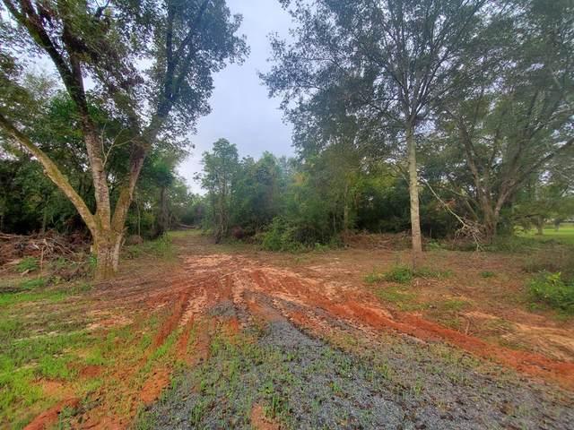 Lot 1 Pat Whatley Road, Dawson, GA 39842 (MLS #148706) :: Hometown Realty of Southwest GA
