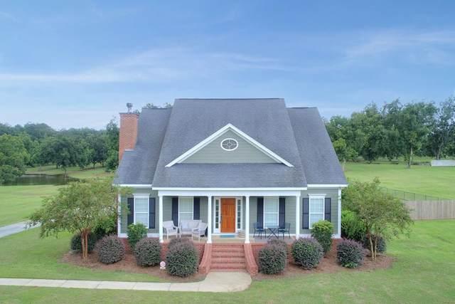 381 Hickory Grove Road, Leesburg, GA 31763 (MLS #146014) :: Crowning Point Properties