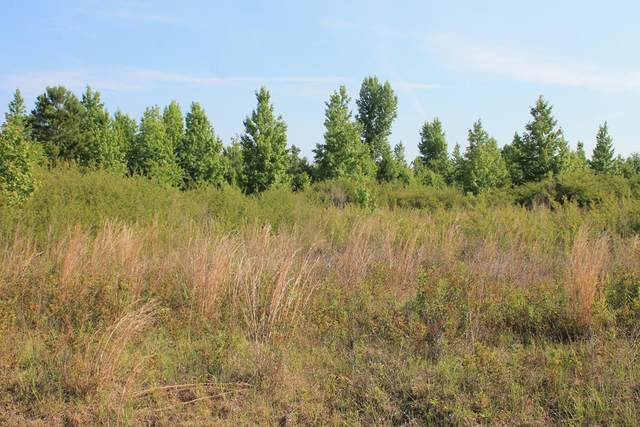 105 Mill Creek Court, Sylvester, GA 31791 (MLS #147702) :: Hometown Realty of Southwest GA