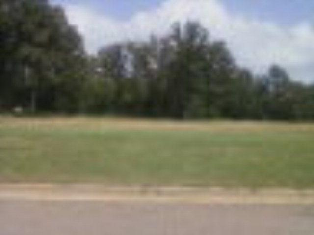 24 Wiregrass Way, Leesburg, GA 31763 (MLS #111926) :: RE/MAX