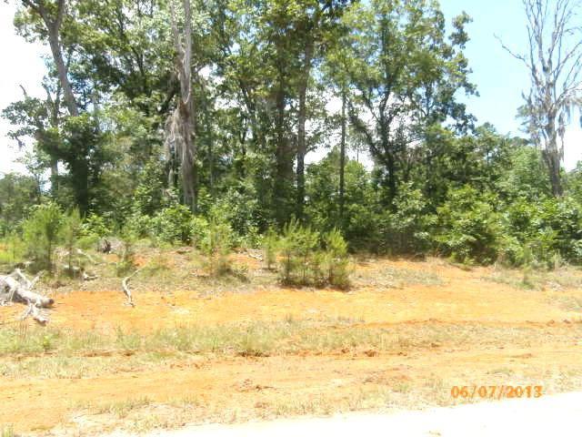 5601 Ironwood Court, Albany, GA 31721 (MLS #124320) :: RE/MAX