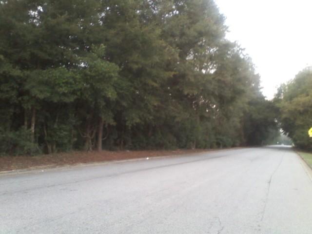 1300 Mock Road, Albany, GA 31705 (MLS #132395) :: RE/MAX