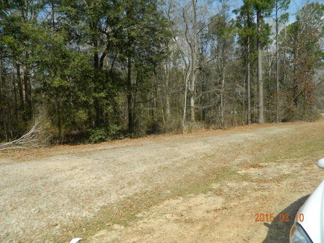 6013 Old Dawson Road, Albany, GA 31721 (MLS #133357) :: Hometown Realty of Southwest GA