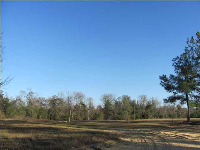 LL 103 Grave Springs Rd, Leesburg, GA 31763 (MLS #136282) :: RE/MAX