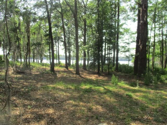 LOT 159A Wolfs Thick Road, Cordele, GA 31015 (MLS #138460) :: RE/MAX