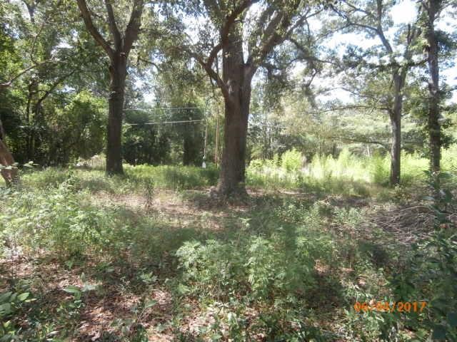 2904 Dove Avenue, Albany, GA 31723 (MLS #138760) :: RE/MAX