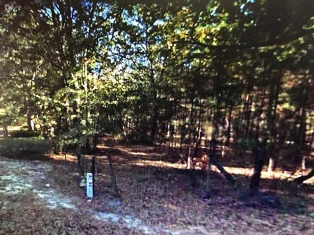 0000 Flowing Well Road, Leesburg, GA 31763 (MLS #138814) :: RE/MAX
