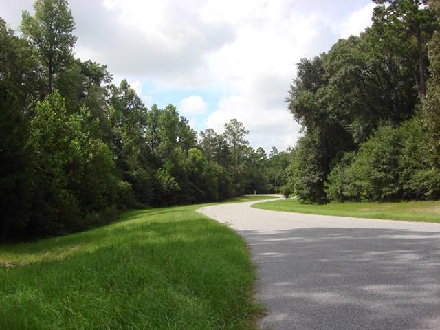 LOT 19 Woodlake Court - Photo 1