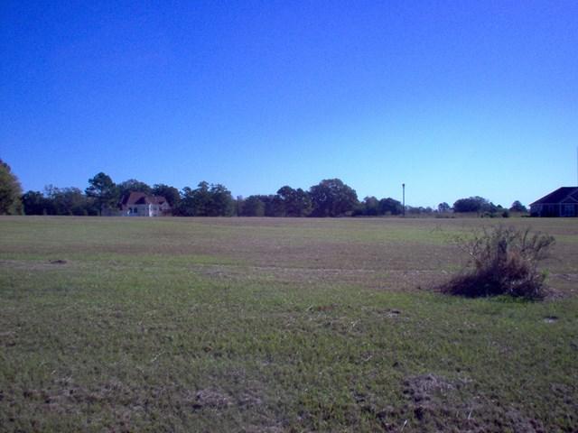 117 Bermuda Lane, Albany, GA 31721 (MLS #139561) :: RE/MAX