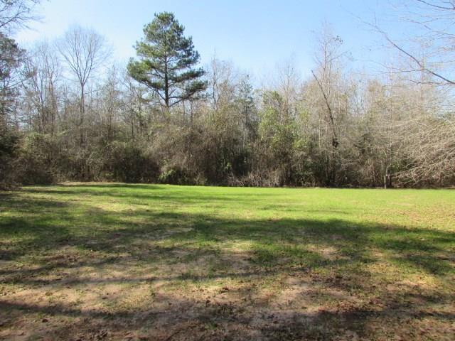 3832 Kennedy Pond Road, Dawson, GA 39842 (MLS #140965) :: RE/MAX