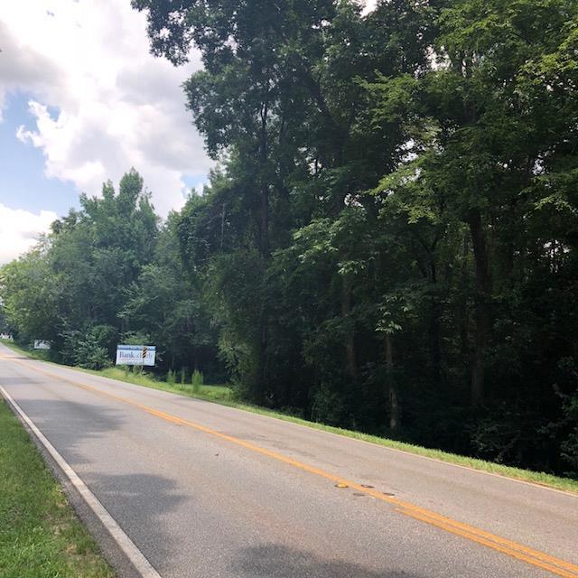 NA South Main Street, Blakely, GA 39823 (MLS #141273) :: RE/MAX