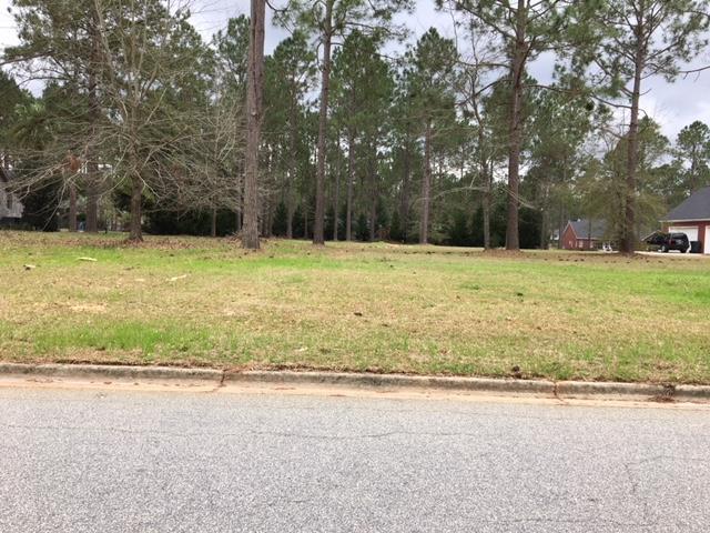 0 E Westerlee Drive E, Leesburg, GA 31763 (MLS #142420) :: Crowning Point Properties