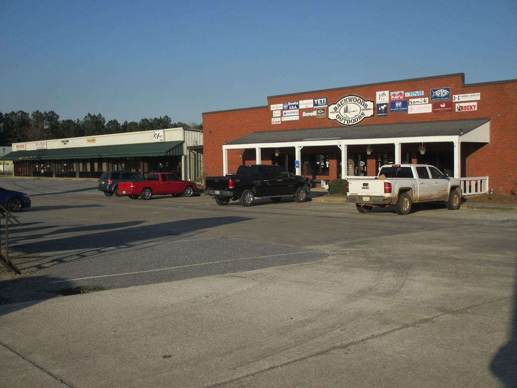 1461 Hwy 19S - Photo 1