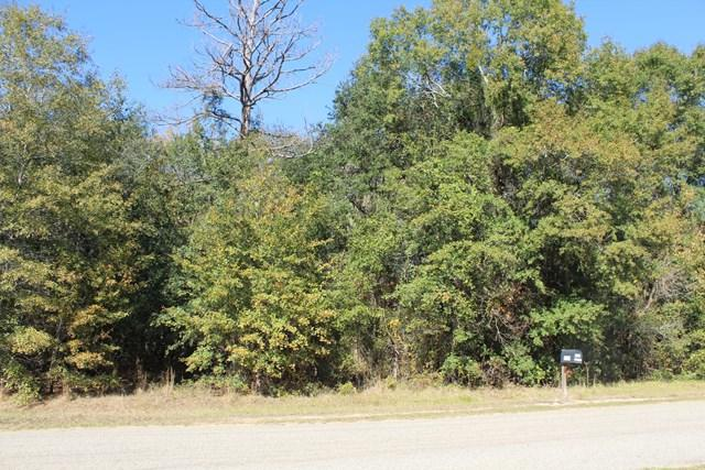 000 Morey Hill Rd, Baconton, GA 31716 (MLS #143478) :: RE/MAX