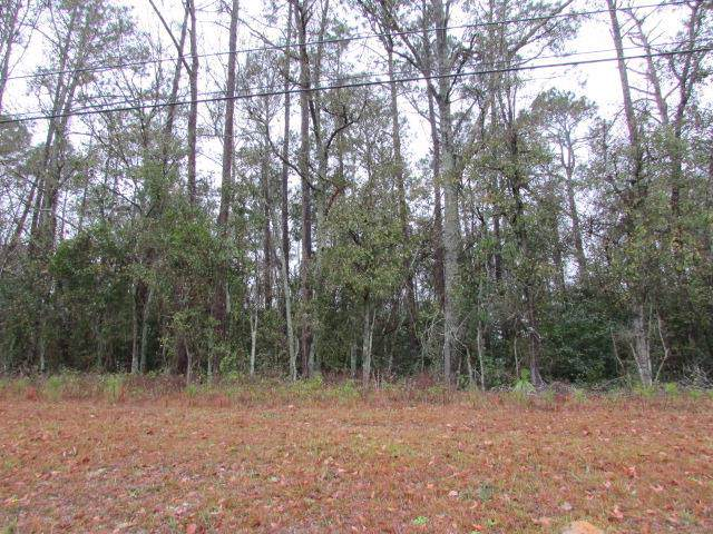 000 U S Hwy 19 S, Pelham, GA 31779 (MLS #144574) :: RE/MAX