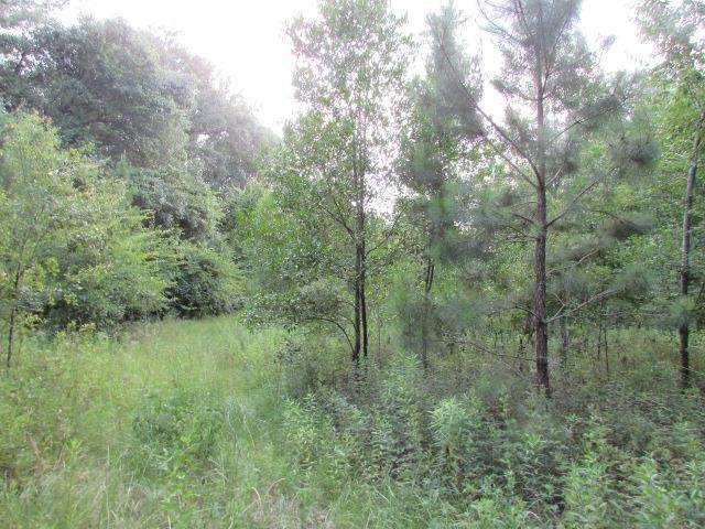 00 Draper Jones Road, Colquitt, GA 39837 (MLS #145498) :: Crowning Point Properties