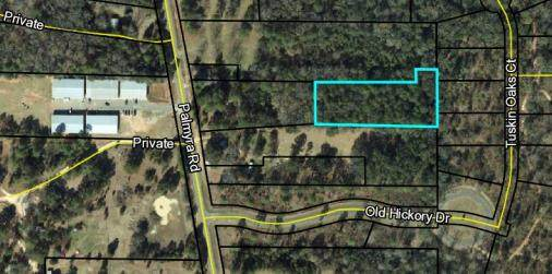 0000 Palmyra Road, Leesburg, GA 31763 (MLS #145732) :: Crowning Point Properties