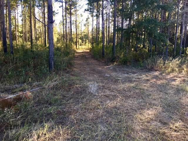 1064 Forrester Pkwy, Leesburg, GA 31763 (MLS #146392) :: Crowning Point Properties
