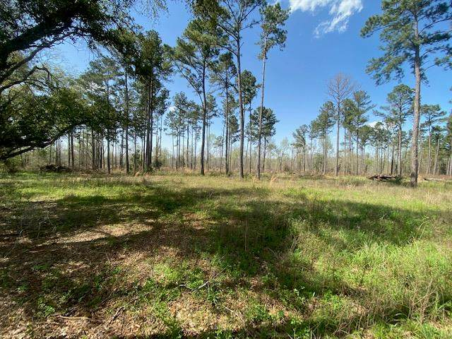 0 Gillionville Road, Albany, GA 31721 (MLS #147180) :: Crowning Point Properties
