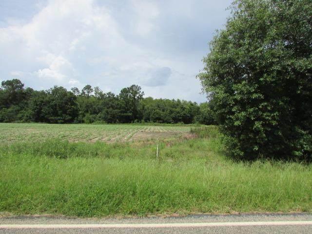 0 Camp Osborn Rd, Oakfield, GA 31772 (MLS #148067) :: Crowning Point Properties
