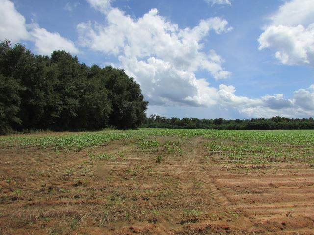 0 To Be Added, Oakfield, GA 31772 (MLS #148068) :: Crowning Point Properties