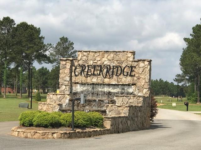 155 Creekridge Drive, Leesburg, GA 31763 (MLS #138418) :: RE/MAX