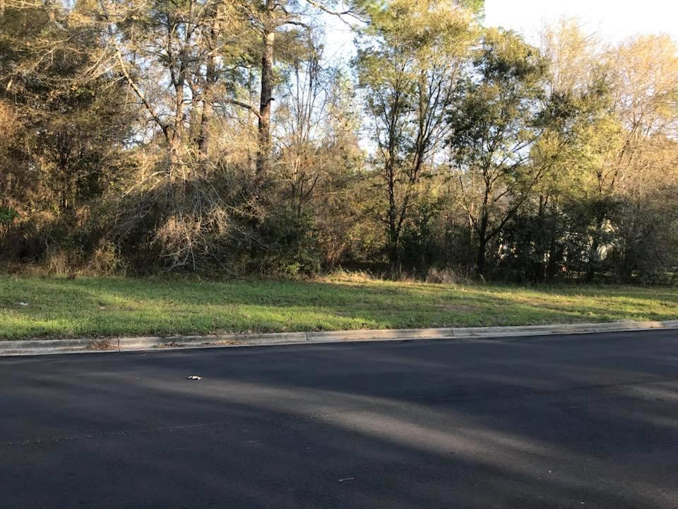 1407 River Pointe Drive - Photo 1
