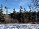 13876 Ravine Drive - Photo 3