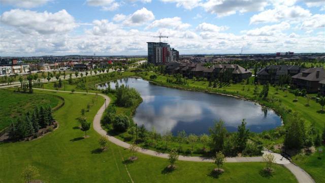 204 304 Ambleside Link, Edmonton, AB T6W 0V2 (#E4069860) :: GETJAKIE Realty Group Inc.