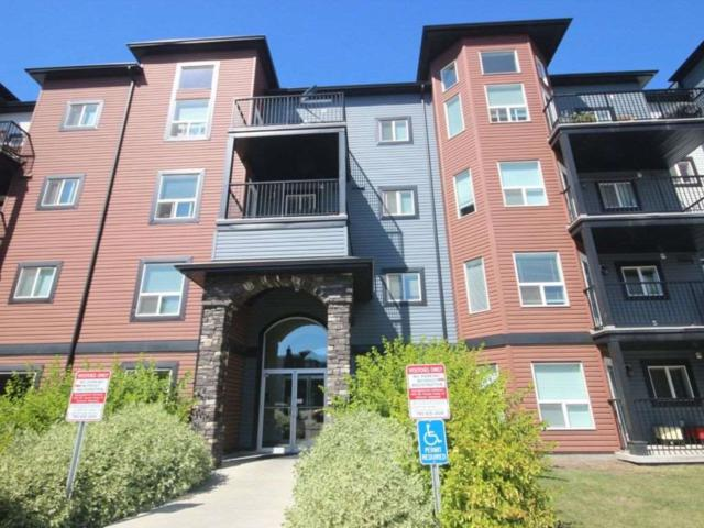 316 400 Silver Berry Road, Edmonton, AB T6T 0H1 (#E4077992) :: The Foundry Real Estate Company
