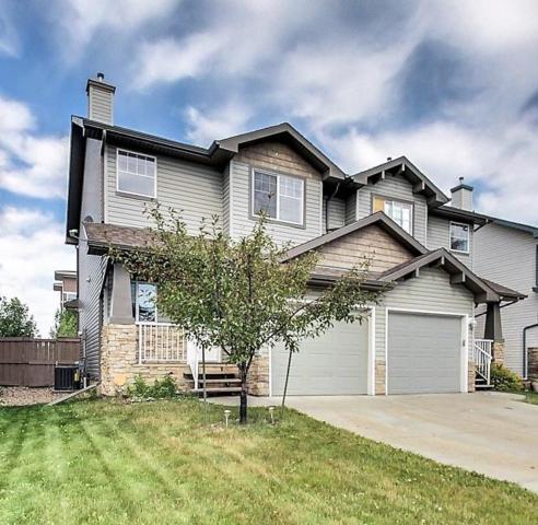 9109 Scott Crescent, Edmonton, AB T6R 0E7 (#E4078135) :: The Foundry Real Estate Company