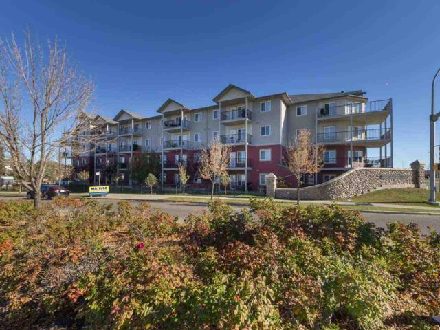 123 111 Edwards Drive, Edmonton, AB T5C 1R9 (#E4084943) :: The Foundry Real Estate Company