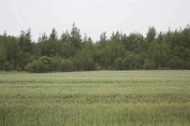 Twp Rd 630 Rg Rd 232, Rural Athabasca County, AB T0G 1Z0 (#E4086313) :: GETJAKIE Realty Group Inc.