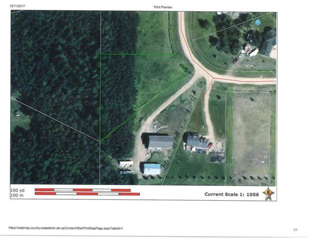 4 Beachside Estates, Rural Wetaskiwin County, AB T0C 2V0 (#E4090555) :: The Foundry Real Estate Company