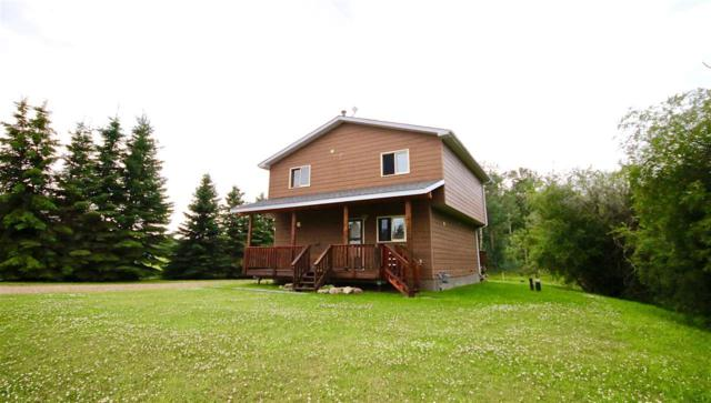 431 Swedberg Street, Rural Wetaskiwin County, AB T0C 2V0 (#E4097239) :: The Foundry Real Estate Company
