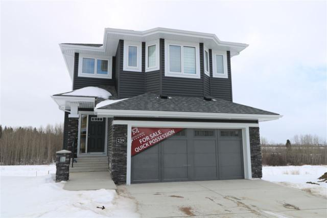 239 Hawks Ridge Boulevard NW, Edmonton, AB T5S 0M1 (#E4097807) :: The Foundry Real Estate Company