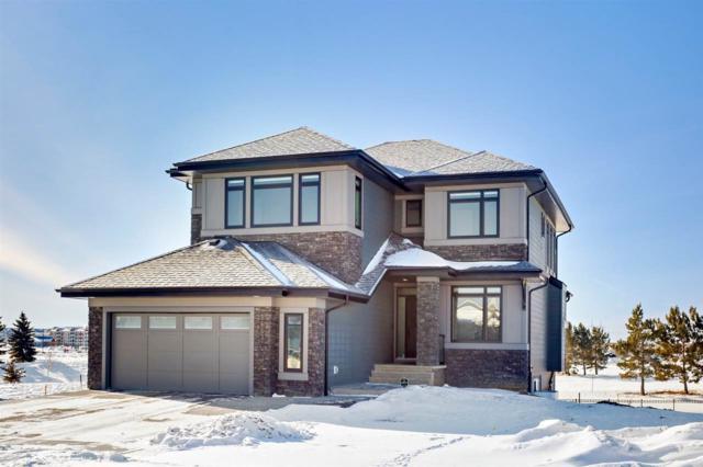 1163 Hainstock Green, Edmonton, AB T6W 3B6 (#E4098600) :: The Foundry Real Estate Company